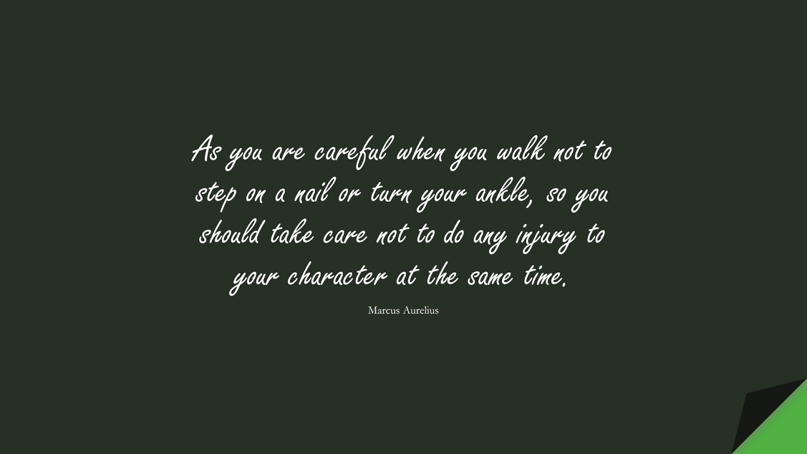As you are careful when you walk not to step on a nail or turn your ankle, so you should take care not to do any injury to your character at the same time. (Marcus Aurelius);  #MarcusAureliusQuotes