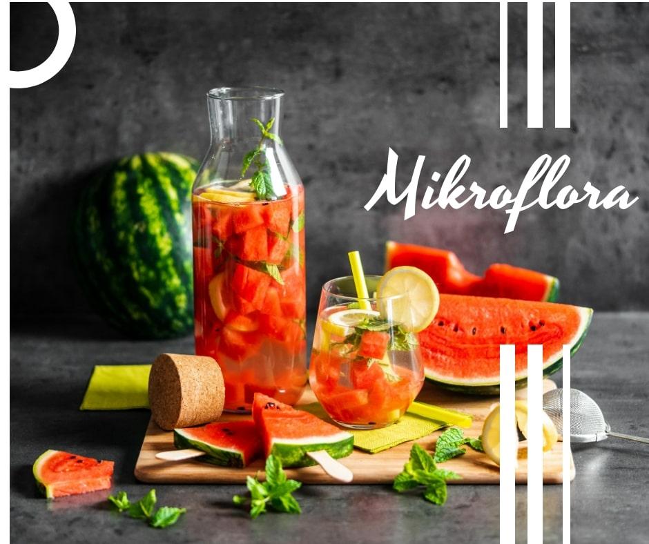 mikroflora_co-to