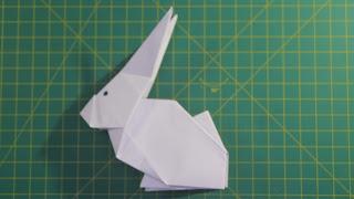 Hướng dẫn cách gấp con thỏ bằng giấy trắng a4 đơn giản