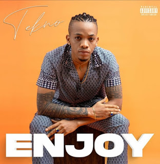 Tekno - Enjoy (Afro Pop)
