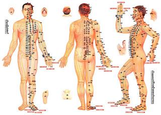 L'acupuncture est un traitement qui utilise des aiguilles fines