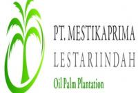 Lowongan Kerja PT. MESTIKA PRIMA LESTARI INDAH Penemptan Aceh Tamiang
