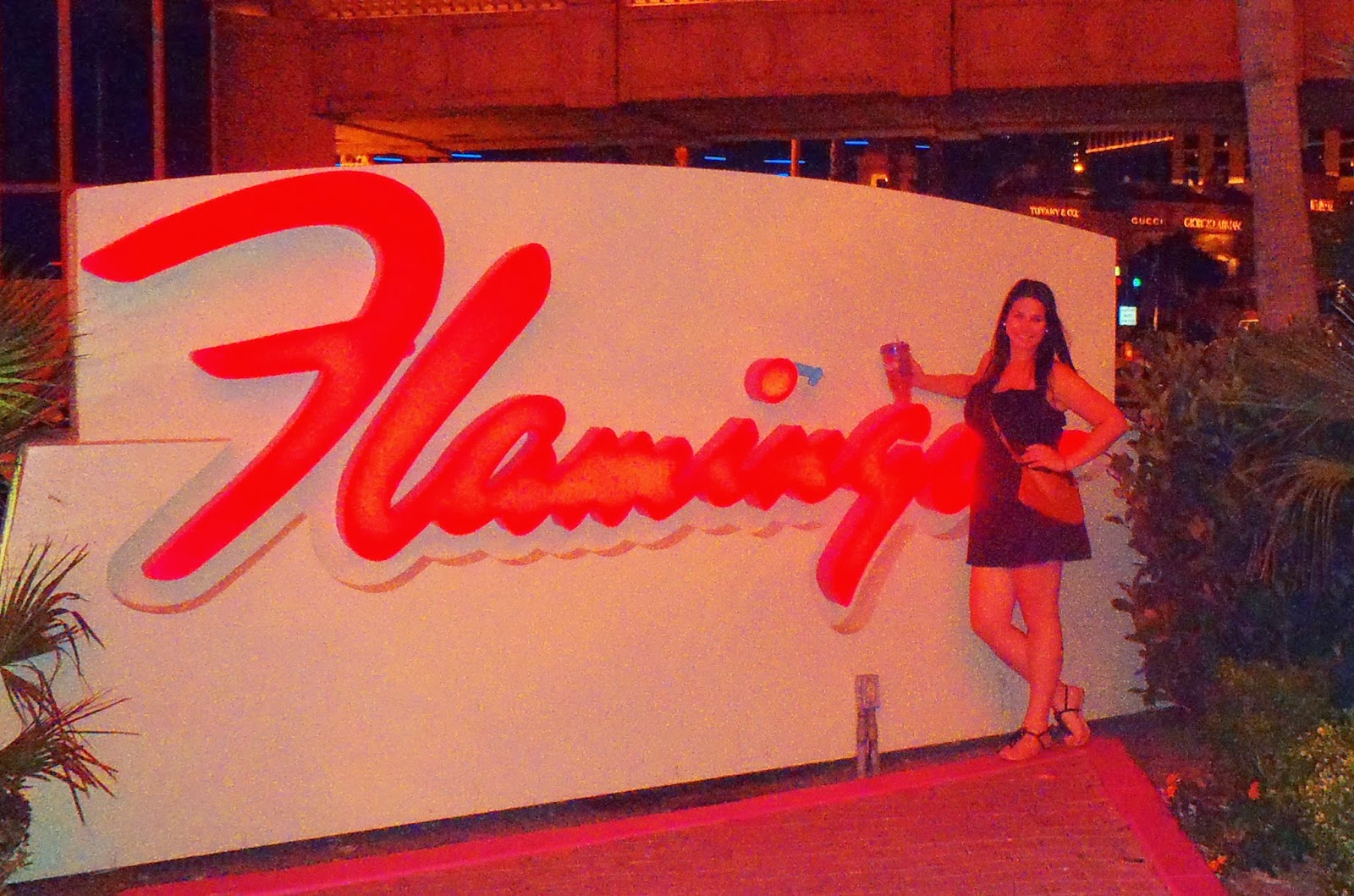 Simone standing in front of Flamingo sign Las Vegas