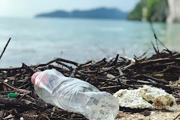 Statistics for Ocean Pollution in Developing Cuntry