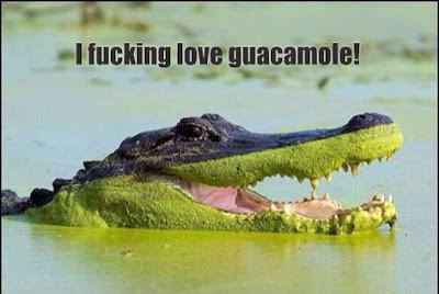 I love guacamole..