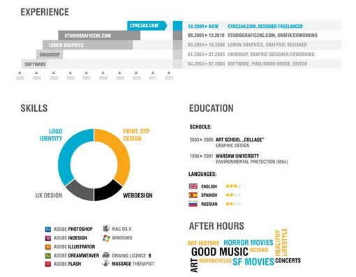 estilo infografia curriculum vitae