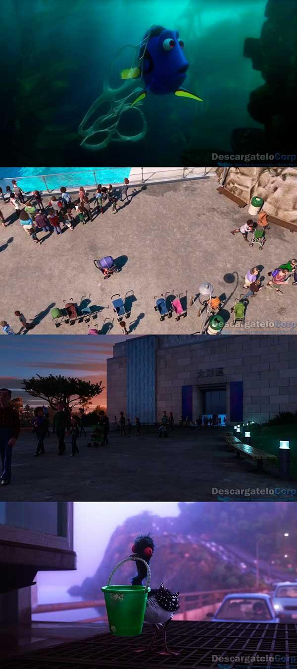 Buscando a Dory HD 720p Español Latino