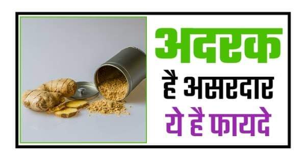 Ginger Benefits in Hindi : अदरक है असरदार जानिए 10 लाजवाब फायदे 2