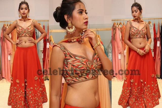 Harathi Honey Red Lehenga