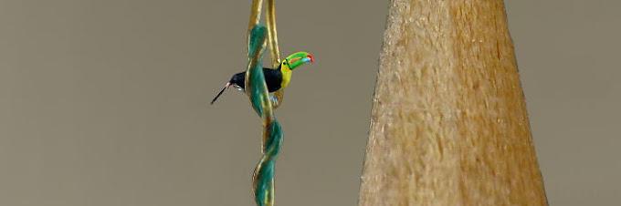 20 Foto Miniatur Burung, Setinggi 1 sampai 2 mm, Lihatnya harus pakai Mikroskop