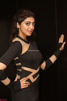 Pranitha Subhash in a skin tight backless brown gown at 64th Jio Filmfare Awards South ~  Exclusive 150.JPG