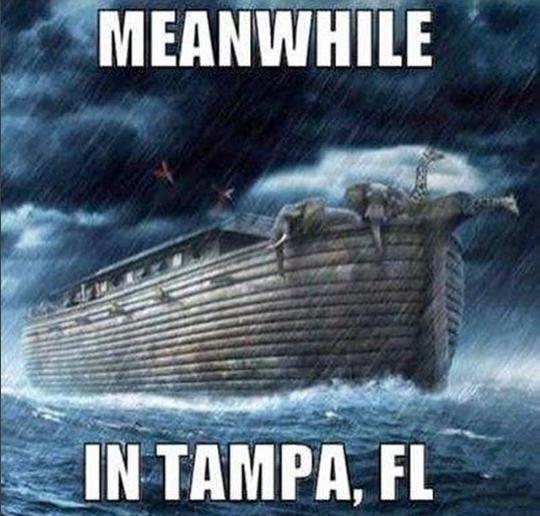 Hurricane Irma & Jose Dank Memes Compilation - YouTube  |Hurricane Irma Memes