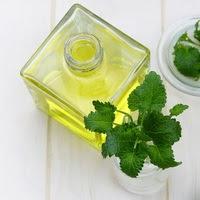 Peppermint Oil (Essential Oil / Minyak Atsiri) - 5ml