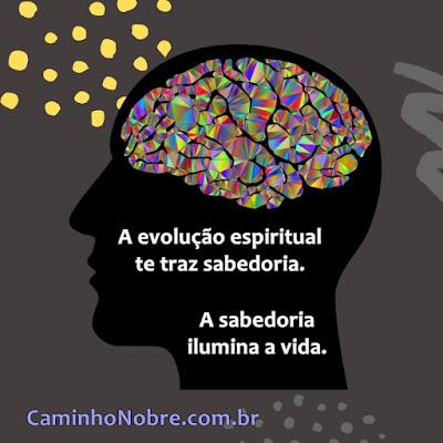A evolução espiritual te traz sabedoria. A sabedoria ilumina a vida. Caminho Nobre