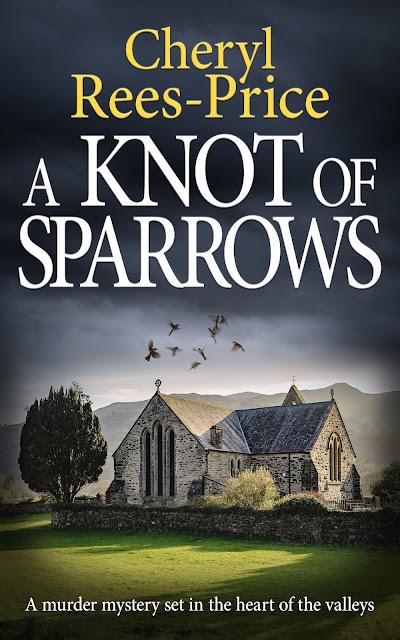 thriller set in Wales