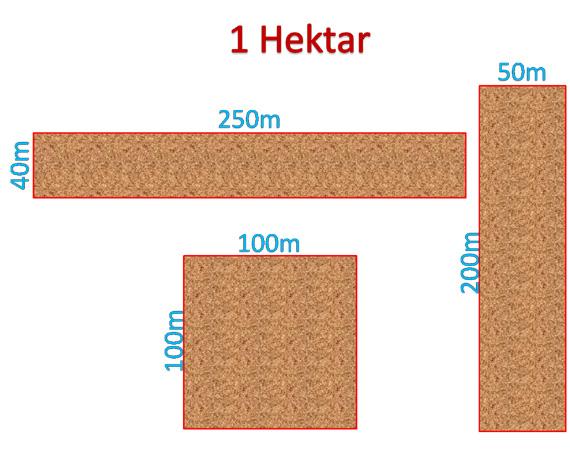 Mengenal satuan Hektar dan bagaimana perhitungannya Satuan luas HEKTAR dan perhitungannya