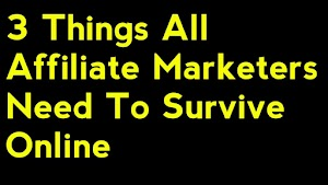 3-Things All Affiliate Marketer Need To Survive Online