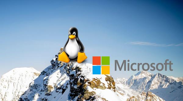 Pilih Microsoft Windows atau Linux bagi Developer Website