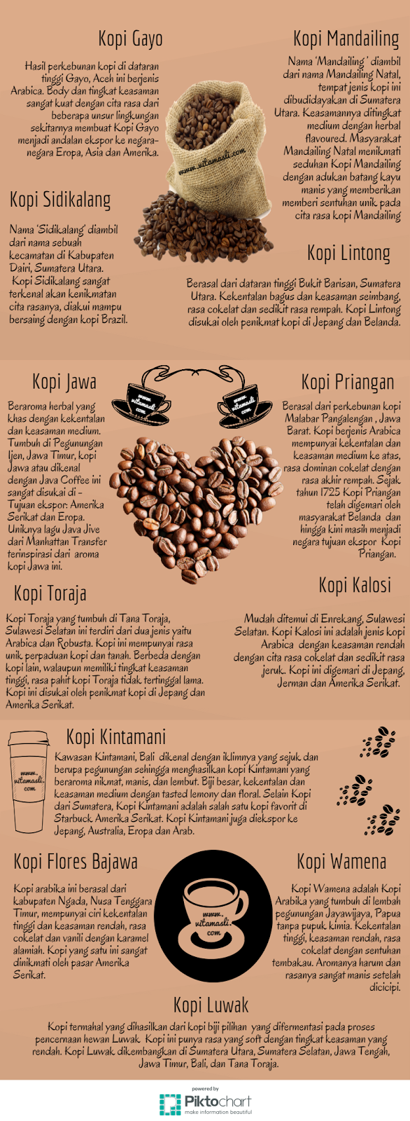Infographics Coffee