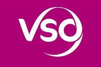 VSO, Communication specialist Volunteer