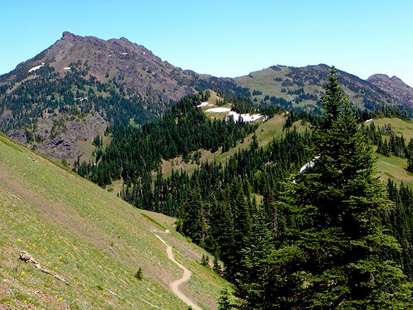 Hurricane Ridge with Trail and Snow