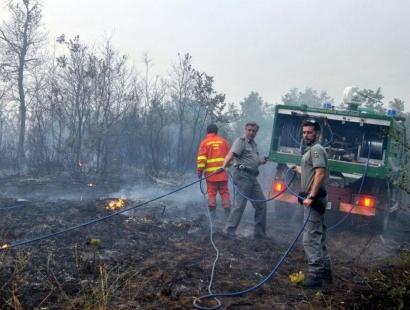 Unesco, l'impegno dell'Italia nella lotta agli incendi