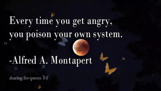 Anger quotes 76