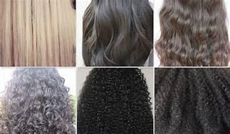 أنواع الشعر