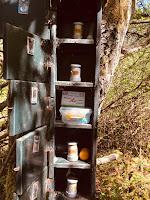 geocaching vogelhuisje cache gevonden