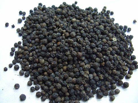 هل استخدمت الفلفل الأسود من قبل كعلاج ؟