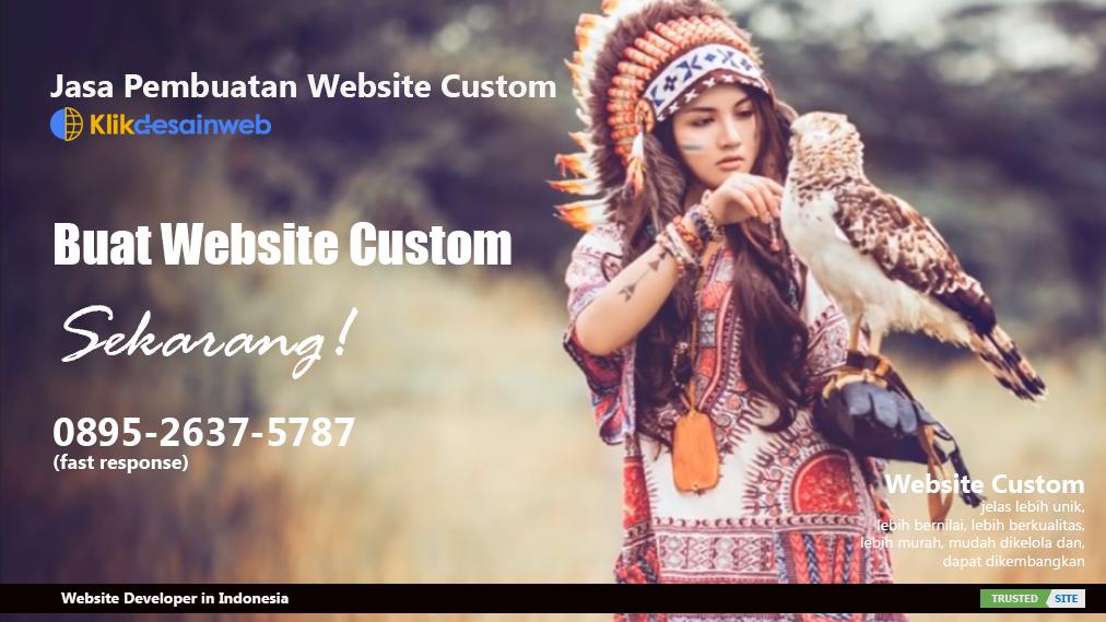 jasa pembuatan website custom