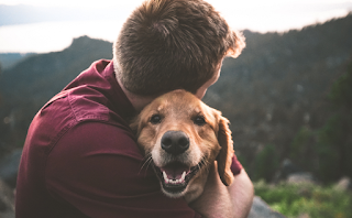 Αν δεν έχεις ζήσει με ένα σκύλο, δεν έχεις καταλάβει τι θα πει ανιδιοτελής αγάπη..