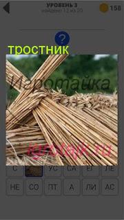 сложен тростник 3 уровень 400+ слов 2