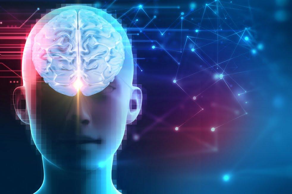 Il cervello non funziona come un computer (e per fortuna!), cambio di paradigma