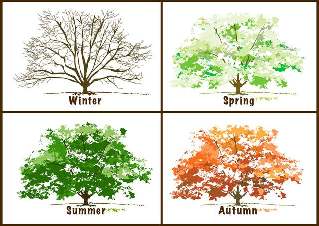 Four Seasons, Four Symbol and Meaning