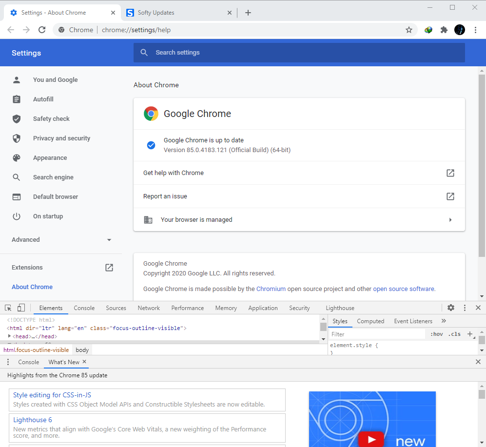 Google Chrome Browser 85.0.4183.102