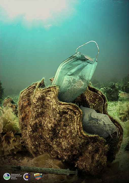 giant clams affected by waste face mask underwater pollution