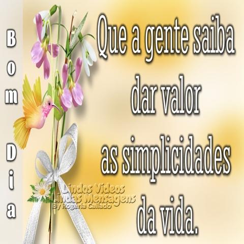 Que a gente saiba  dar valor as simplicidades  da vida.  Bom Dia!