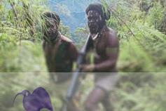 Satu TNI tewas:'Komandan Operasi' TNI jangan sembunyikan jenasa, hari ini Terjadi kontak senjata TPN-PB vs TNI di Kodap VIII intan Jaya