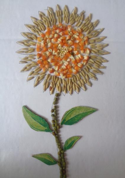 kumpulan mewarnai sketsa gambar bunga matahari untuk