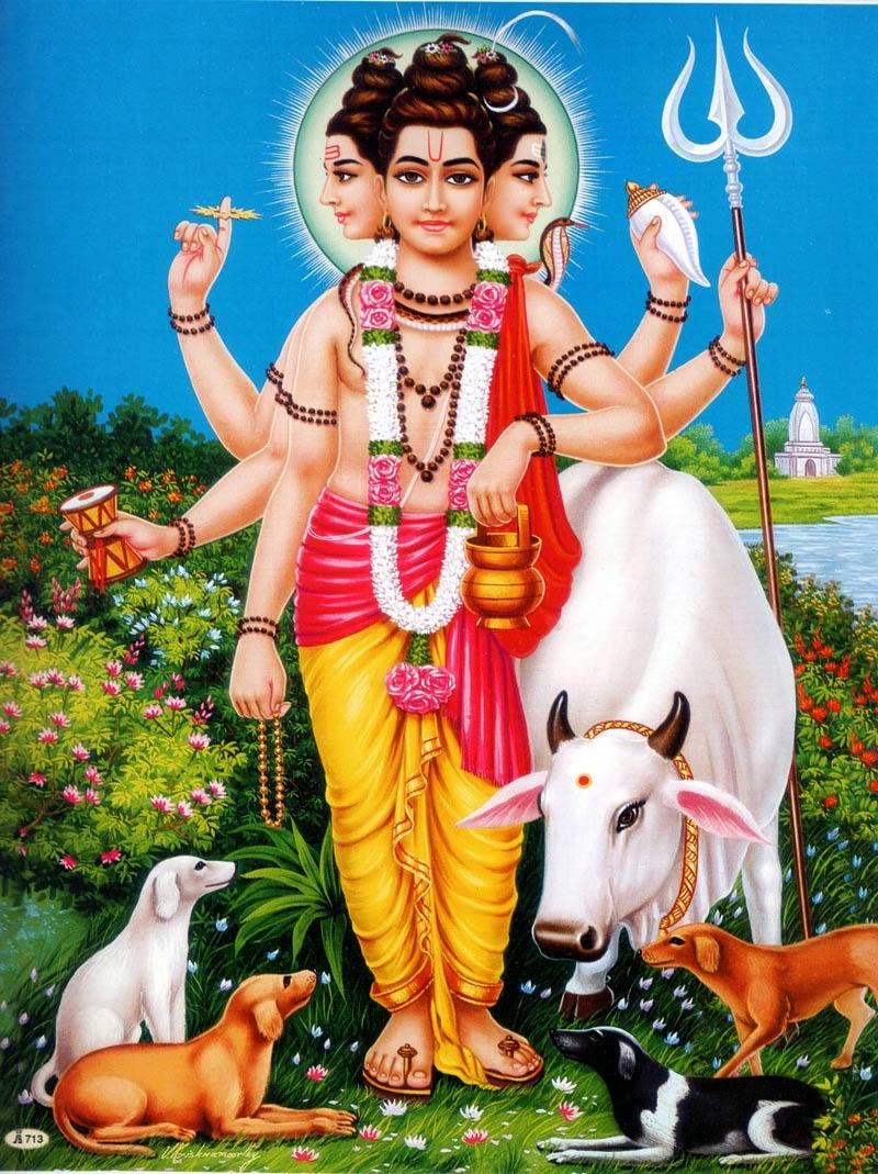 Lord Shiva Hd Wallpapers For Pc Dattatreya Junglekey In Image