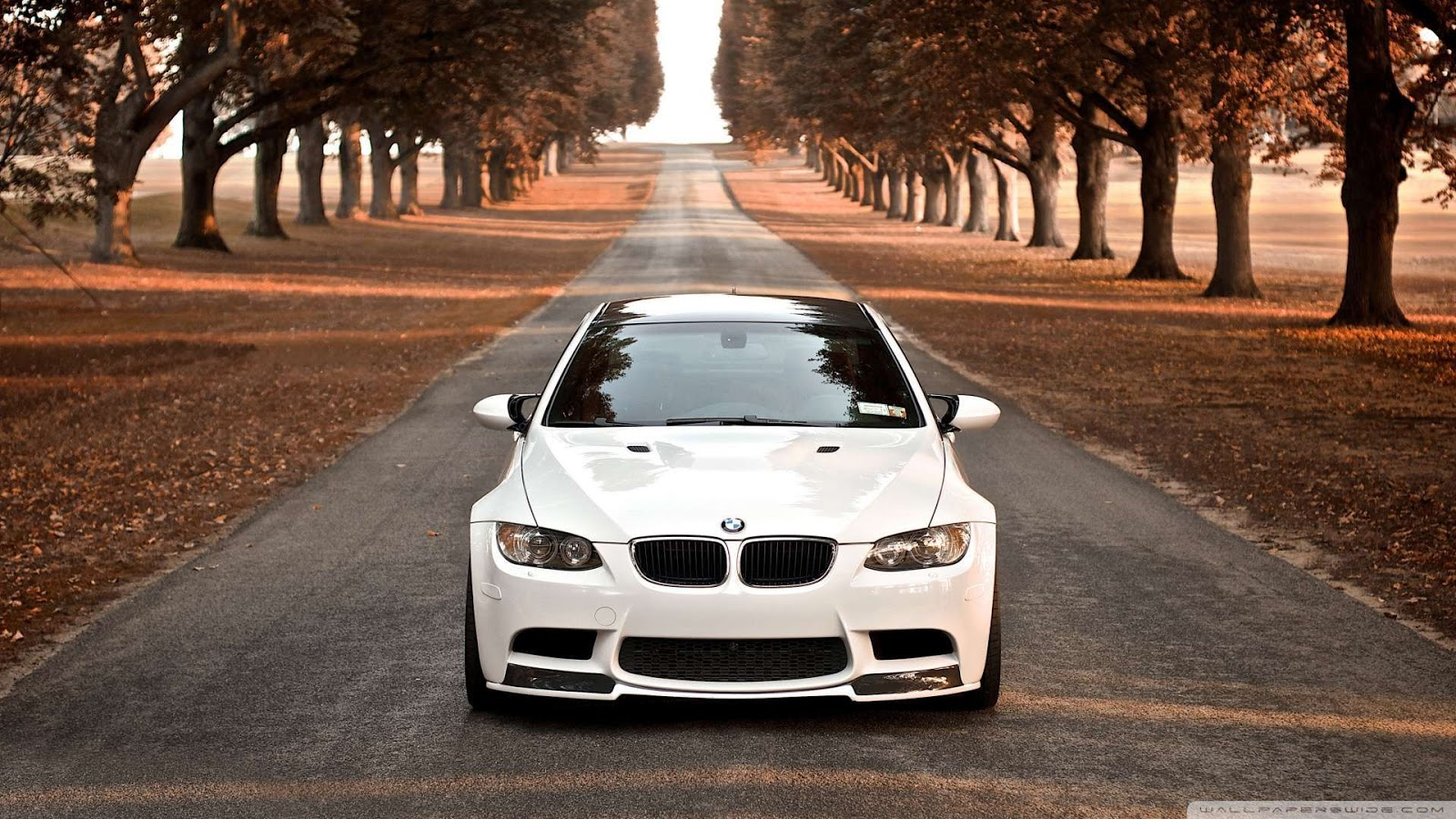 Group Of Bmw Wallpaper 1080P