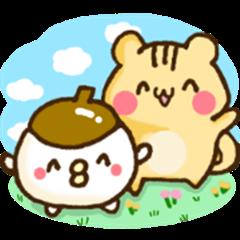 Donguri and Risu