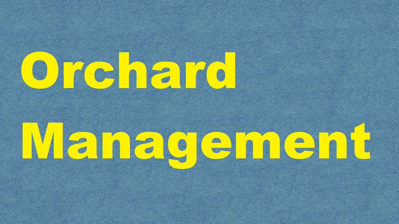 Orchard management ICAR E course Free PDF Book Download e krishi shiksha