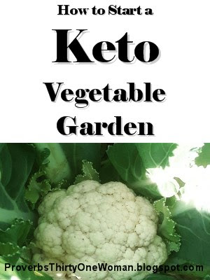 how to have a winter vegetable garden