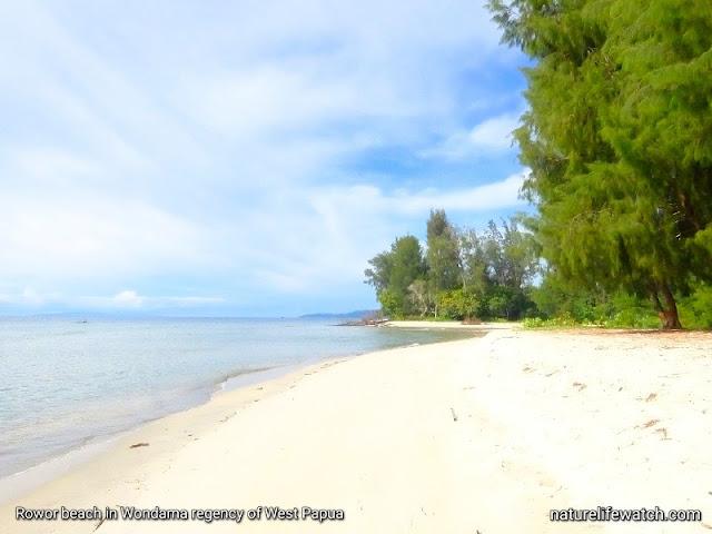Pantai Rowor di Teluk Wondama, Provinsi Papua Barat
