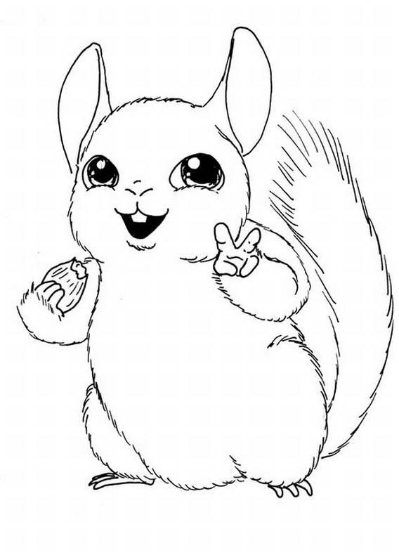scoiattolo, alberi, animali,