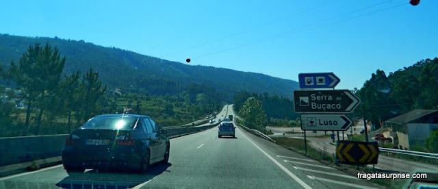 Estrada de Coimbra à Serra da Estrela