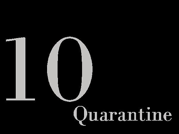 QUARANTINE DATE IDEAS