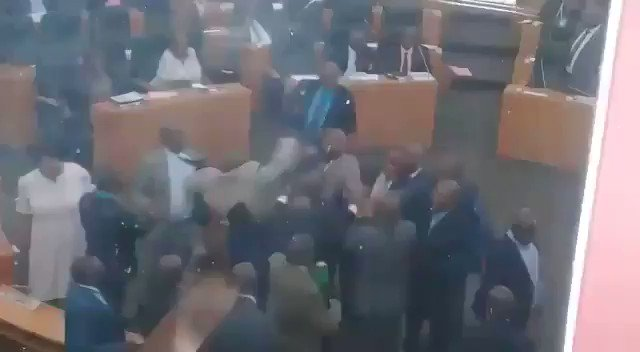 Watch: Lesotho MPs engage in free-for-all fight on the floor of parliament